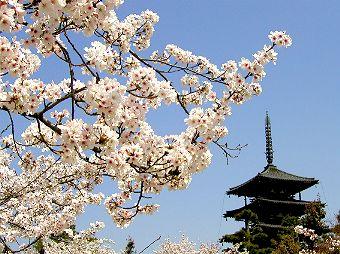 日本奈良法隆寺